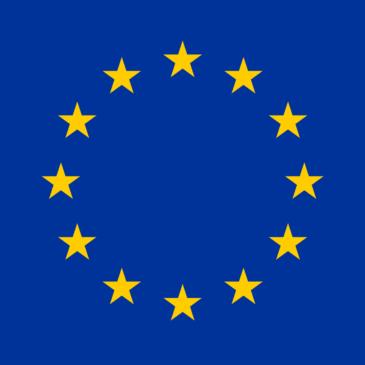 La prestazione di servizi nell'Unione Europea